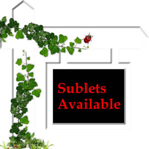 Sublet Available